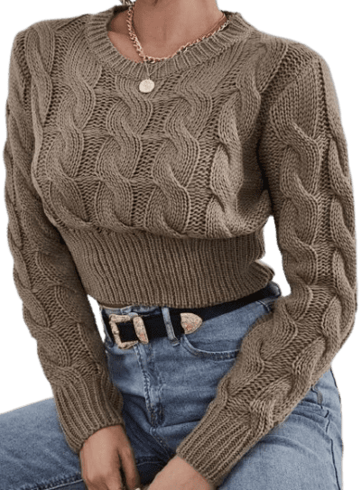 Mocha Brown Cable Knit Crop Sweater-Shein